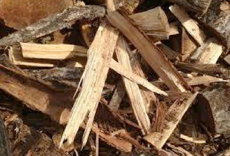 木質系廃棄物のリサイクル
